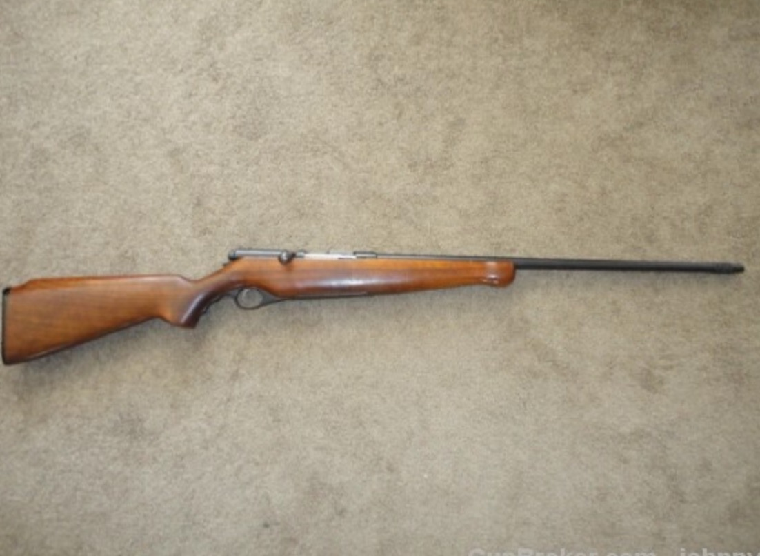 What was your FIRST shot gun?-image.jpeg