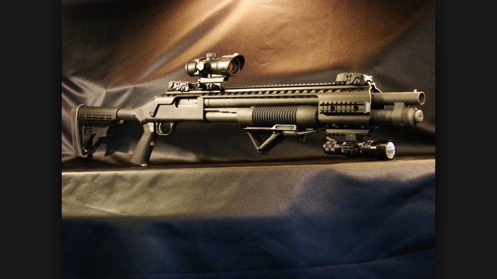 Opinions For The Best Laser Set Up For A Mossberg Cruiser