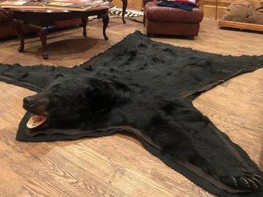 hunting Big Bears-phil-black-bear.jpg